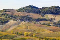 Vista del paesaggio naturale della serra di viti italiana Immagine Stock