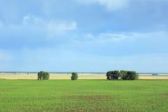 Vista del paesaggio rurale in Siberia Immagini Stock