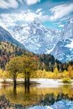 Vista del paesaggio sulle alpi slovene Fotografia Stock