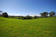 Vista del paese con lo stagno Fotografia Stock Libera da Diritti