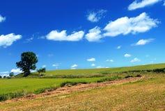Vista del paese di estate Fotografia Stock