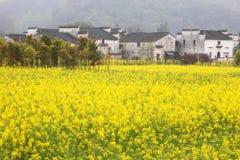 Vista del paese in Wuyuan Fotografia Stock Libera da Diritti
