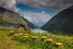 Vista del paisaje idílico de la montaña en las montañas con los prados verdes frescos en la floración y el lago azul el día solea foto de archivo libre de regalías