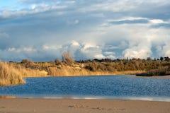 Vista del paisaje ilustrado del lago foto de archivo