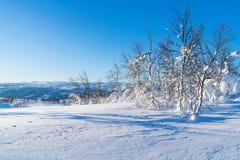 Vista del paisaje nevoso en Beitostolen Fotografía de archivo libre de regalías