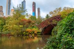 Vista del paisaje del otoño en Central Park imágenes de archivo libres de regalías