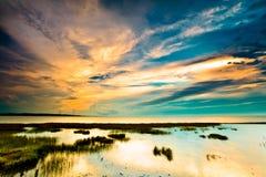 Vista del paisaje tropical del humedal en la salida del sol Imagen de archivo libre de regalías