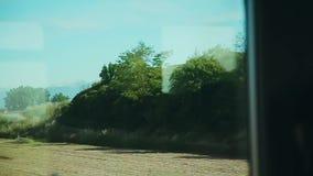 Vista del paisaje verde pintoresco de la ventana de un tren móvil Visión desde la ventana del tren en el campo almacen de metraje de vídeo