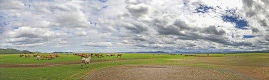 Vista del panorama del paesaggio della diga del bacino idrico Fotografia Stock