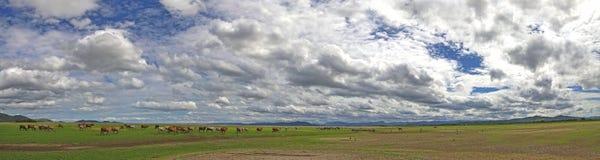 Vista del panorama del paesaggio della diga del bacino idrico Fotografia Stock Libera da Diritti