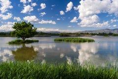 Vista del pantano de Gantes de los les. Aiguamolls de l'Emporda. Foto de archivo