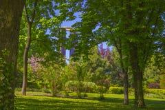 Vista del parco Immagine Stock