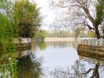 Vista del parco del lago Immagini Stock Libere da Diritti