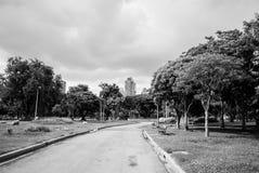 Vista del parco di lumphini Immagine Stock