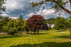 Vista del parco di Marianske Lazne Immagine Stock