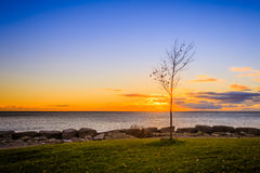 Vista del parco di Scarborough fotografia stock libera da diritti