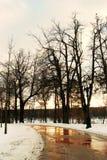 Vista del parco di Tsaritsyno a Mosca Alberi di inverno Fotografia Stock