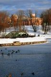 Vista del parco di Tsaritsyno a Mosca Stagno congelato Immagine Stock