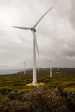 Vista del parco eolico vicino ad Albany Fotografia Stock Libera da Diritti