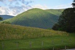 Vista del parco nazionale fumoso della montagna Fotografia Stock