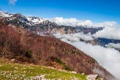 Vista del parco nazionale Slovenia di Triglav Fotografia Stock Libera da Diritti