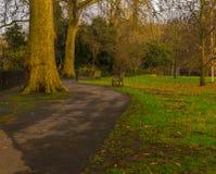Vista del parco verde fotografia stock