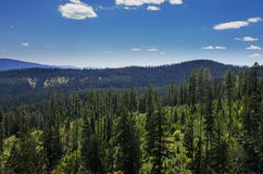 Vista del parque de Fernan National Foto de archivo libre de regalías