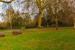 Vista del parque verde Fotografía de archivo libre de regalías