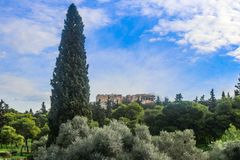 Vista del Partenone sull'acropoli a Atene Grecia da una distanza con molti alberi compreso un albero popolare alto e un'oliva arg immagini stock