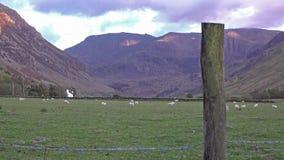 Vista del paso de Nant Ffrancon en el parque nacional de Snowdonia, Gwynedd, País de Gales, Reino Unido almacen de video