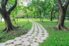 Vista del passaggio pedonale, giardino botanico Immagini Stock