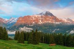 Vista del picco di montagna di Eiger, Grindelwald, Svizzera Immagine Stock Libera da Diritti