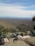 Vista del piso del desierto Fotografía de archivo