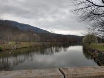 Vista del ponte del fiore di richiamo del lago immagine stock
