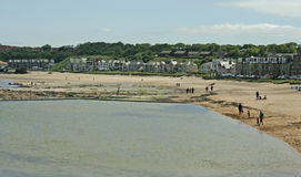 Vista del porto e della spiaggia a Berwick del nord, Scozia Immagine Stock Libera da Diritti
