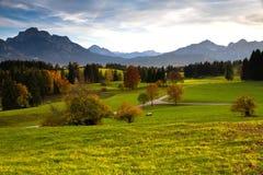 Vista del prato di fioritura con l'alta Montagna-Italia Fotografia Stock Libera da Diritti