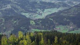 Vista del prato e della foresta nera dalla montagna alla valle fotografie stock libere da diritti