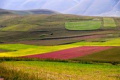 Vista del prato vicino a Castelluccio di Norcia Fotografia Stock Libera da Diritti