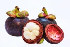 Vista del primo piano dei mangostani della frutta tropicale isolati sui precedenti bianchi Immagini Stock Libere da Diritti
