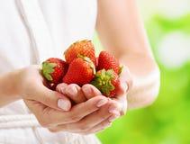 Vista del primo piano delle fragole fresche in mani di una donna Immagini Stock