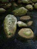 Vista del primo piano delle pietre nel fiume Fotografia Stock