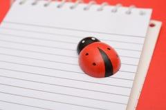 Vista del primo piano di Ladybird sul taccuino della scuola Fotografie Stock
