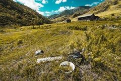 Vista del pueblo abandonado en las montañas de Altai Fotografía de archivo