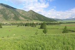 Vista del pueblo de montaña de Elo, Altai, Rusia Foto de archivo