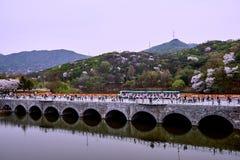 Vista del puente con los turistas reflejados en el lago foto de archivo