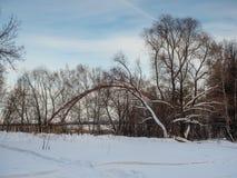 Vista del puente de Bugrinsky del banco del río Obi en Novosibirsk, Rusia fotos de archivo
