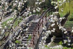 Vista del puente, a través del jardín floreciente Imagenes de archivo