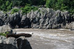 Vista del puesto de observación de Virginia en Great Falls imagenes de archivo