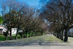 Vista del punto de vista Miradouro Parque Eduardo del parque de Eduardo VII VII Imagenes de archivo