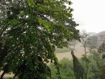 Vista del río Mahaweli Ganga en Kandy en la lluvia imagenes de archivo